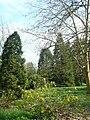 P1110856 Arboretum Bourbonne les Bains cote Amerique.JPG