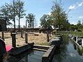 Pairi Daiza enclos des elephants 2.JPG