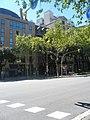 Palau del Baró de Quadras P1380808.jpg