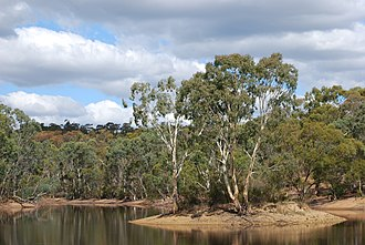 Para Wirra Conservation Park - Recreation park's lake and island