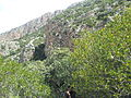 Parc National Jebal Zaghouan 23.jpg