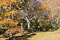 Park (6569703407).jpg