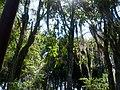 Parque de los Poetas en Mérida 04.jpg
