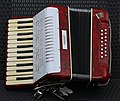 Parrot accordion.jpg