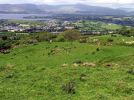 Bantry, County Cork Pasture at the Viewpoint - geograph.org.uk - 15065.jpg