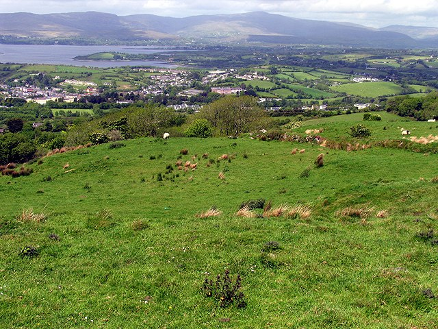 Pasture at the Viewpoint - geograph.org.uk - 15065