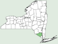 Persea americana NY-dist-map.png