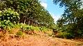Phan Nga 2014, December - panoramio (3).jpg