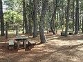 Picnic area - Jardim Botânico de Brasília - DSC09613.JPG