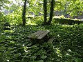 Picnic table, Watcombe - geograph.org.uk - 1330305.jpg