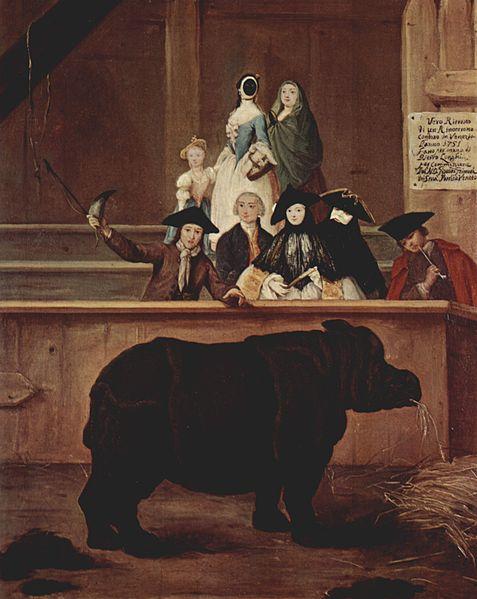 Pietro Longhi: Clara il rinoceronte a Venezia, 1751 (Ca' Rezzonico)