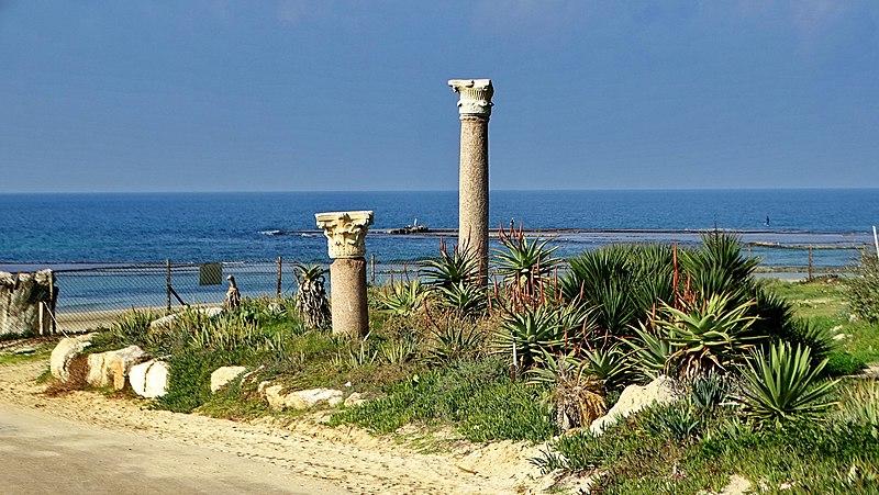חוף שדות ים