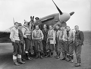 "No. 54 Squadron RAF - Pilots of 54 Squadron, May 1941 gathered round a Supermarine Spitfire Mark IIA Rochford, Essex. On the wing sits their commanding officer, Squadron Leader, R F Boyd, with the squadron mascot ""Crash"". Boyd had at this time destroyed 14 enemy aircraft. At the end of July 1941, he was promoted wing leader of the Kenley Wing, and by the end of his tour in the summer of 1942 had increased his score to at least 22.5."