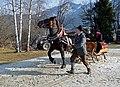 Pinzgauer Brauchtums- und Trachtenschlittenfest, 2. Februar 2014, 7.jpg