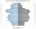 Piramida wieku Wachock.png