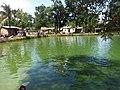 Pond in front of Shah Paran Dhargah.jpg