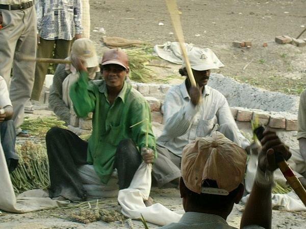 Ponk sellers
