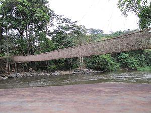 Liana bridge - Liana bridge of Poubara, south of Franceville (Gabon)