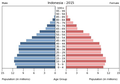 Population pyramid of Indonesia 2015.png