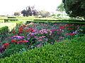 Pormenor do Jardim Botânico da Ajuda (15).jpg
