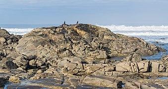 Praia do Forte do Cao (4).jpg