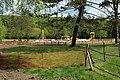 Prairie de Jaumeron à Gif-sur-Yvette le 29 avril 2015 - 16.jpg