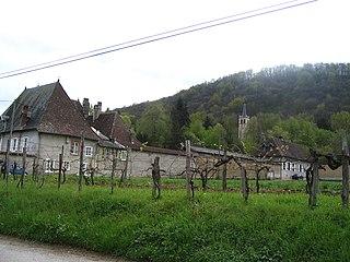 Pressins Commune in Auvergne-Rhône-Alpes, France