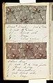Printer's Sample Book (USA), 1880 (CH 18575237-60).jpg