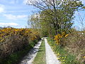 Public footpath near Frankby Cottage, Wirral (1).JPG