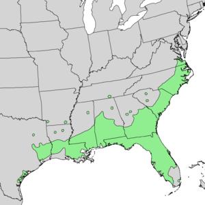 Quercus laurifolia - Image: Quercus laurifolia range map 1