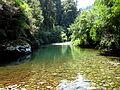 Río Trovolhue.jpg