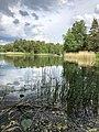 Rösjön lake (Sollentuna).jpg