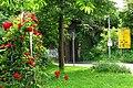 RASTATT Wintersdorf - panoramio (2).jpg