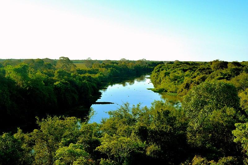 Como é o Pantanal no inverno