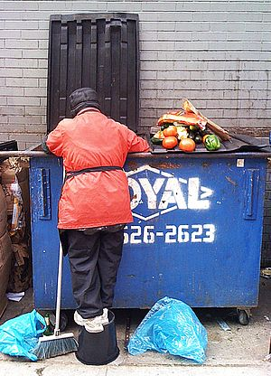 Dumpster diving - A person dumpster diving