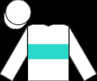 Tikkanen (horse) race horse