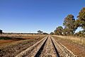 Railway tracks near Dubbo.jpg