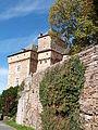 Rempart et château de Montrozier.JPG