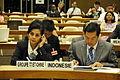 Representatives of Indonesia (8008836561).jpg