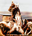 Return of the Ancients Ogias at 1978 Nambassa Winter Show, Mahana Rock Opera, NZ Tour.jpg