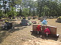 Revised photo Hathorn Cemetery (2011) IMG 5069.JPG