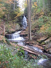 Photo of a tall cascade with a hiking trail visible to the left as it ascends the hillside beside the falls. A long fallen tree trunk crosses the stream at the foot of the falls. The trees are in various stages of autumn color and conifer saplings line the bank.