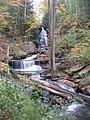 Ricketts Glen State Park Ozone Falls 3.jpg