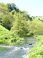 River Dove - geograph.org.uk - 1339695.jpg
