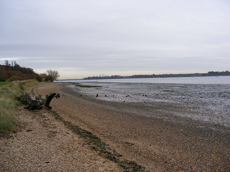 River Orwell Shore - geograph.org.uk - 1044570