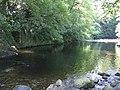 River Tavy - geograph.org.uk - 203533.jpg