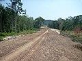 Road clearing Koh Rong island.jpg