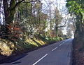 Road near Clay House - geograph.org.uk - 119976.jpg