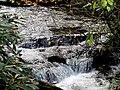 Roaring Fork Falls Black Mountain Campground Pisgah Nat Forest NC 4339 (37917002412).jpg