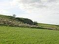 Rock Outcrop Near East Revoch - geograph.org.uk - 165101.jpg